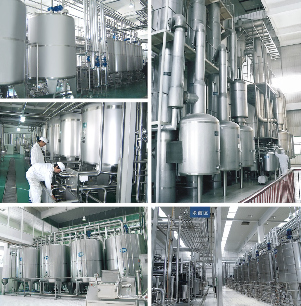CE UHT Milk Processing Line High Temperature Sterilization With Pouch / Bottle