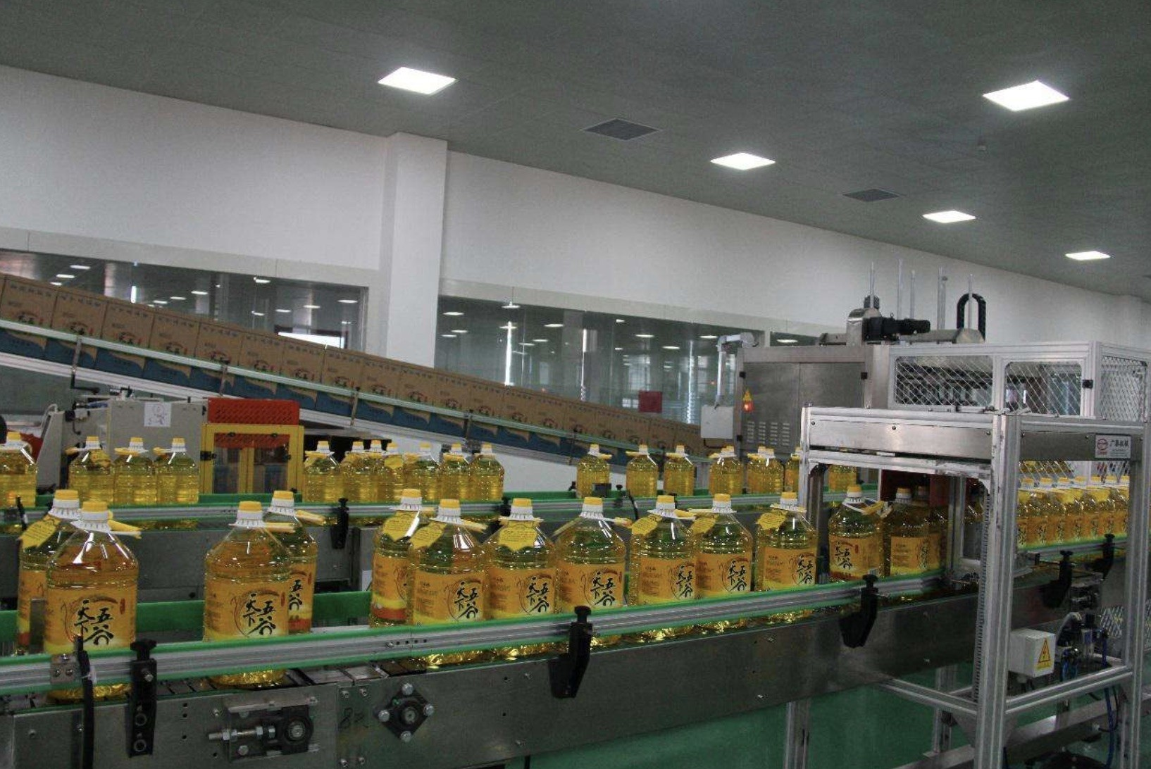 5L Automatic Bottle Filling Machine , Stainless Steel Edible Oil Filling Machine
